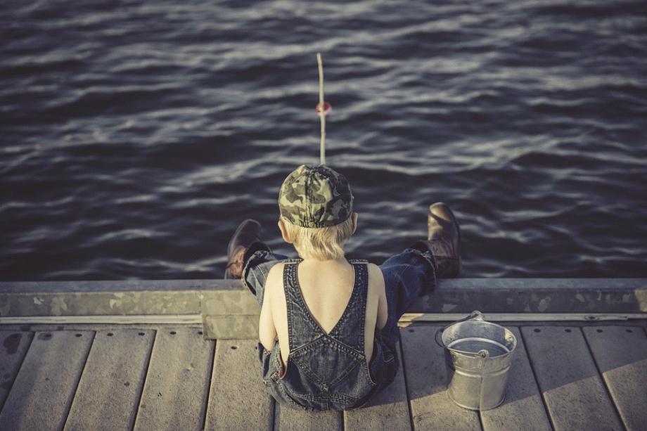 Hvilken madding er bedst til fiskeri?