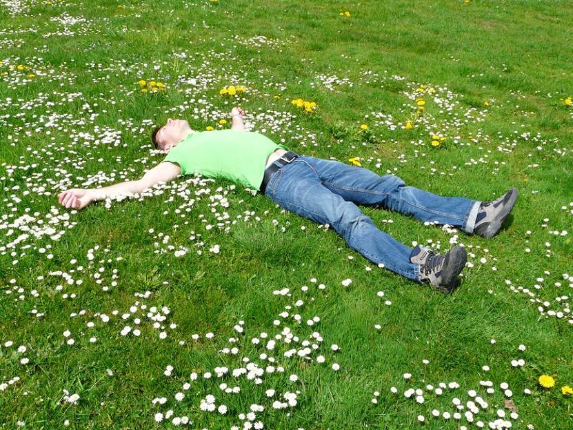 6 lette trin til hvordan du redder græsplænen efter tørke