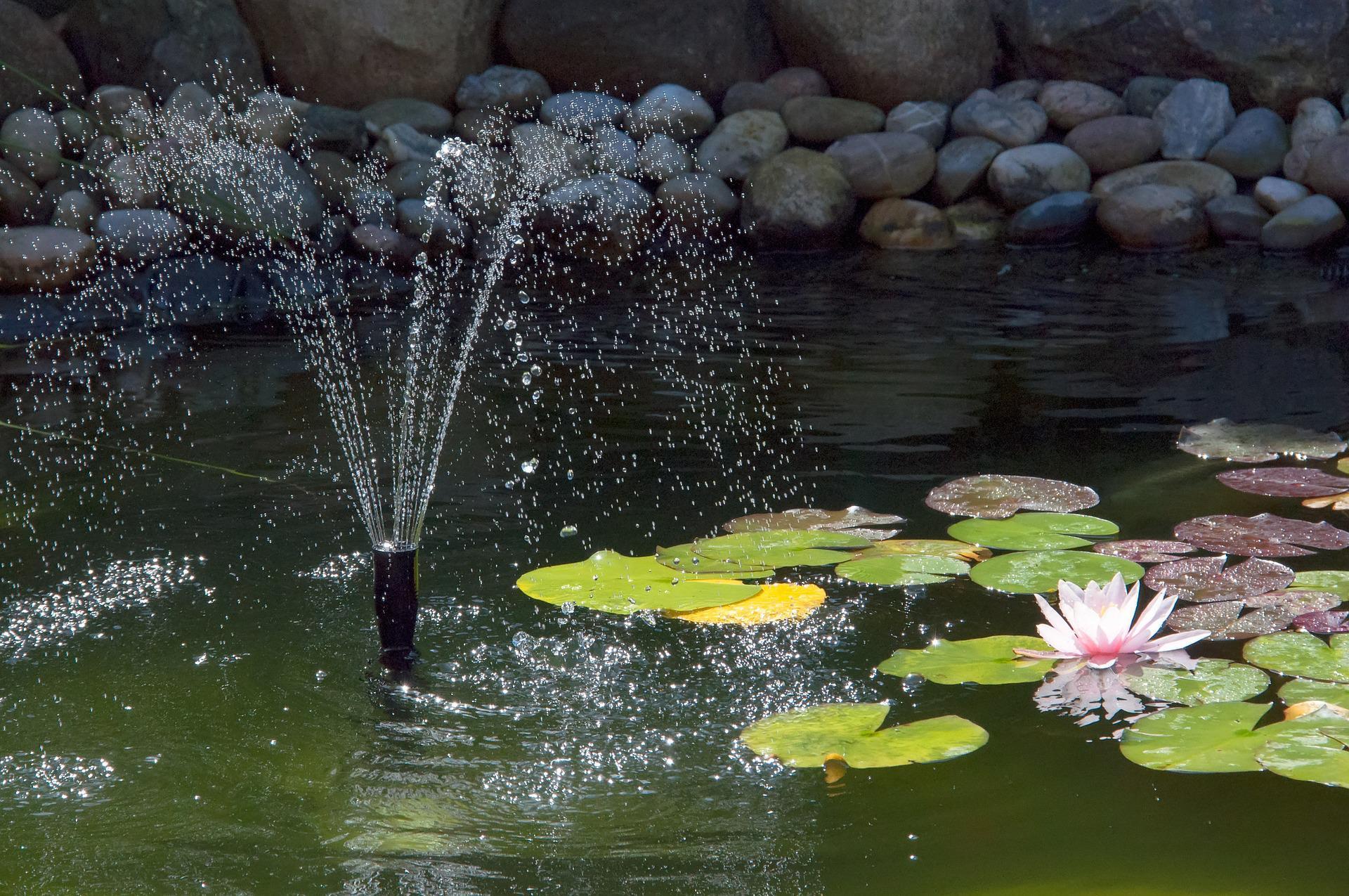 Flot springvand, der hverken koster dig eller miljøet